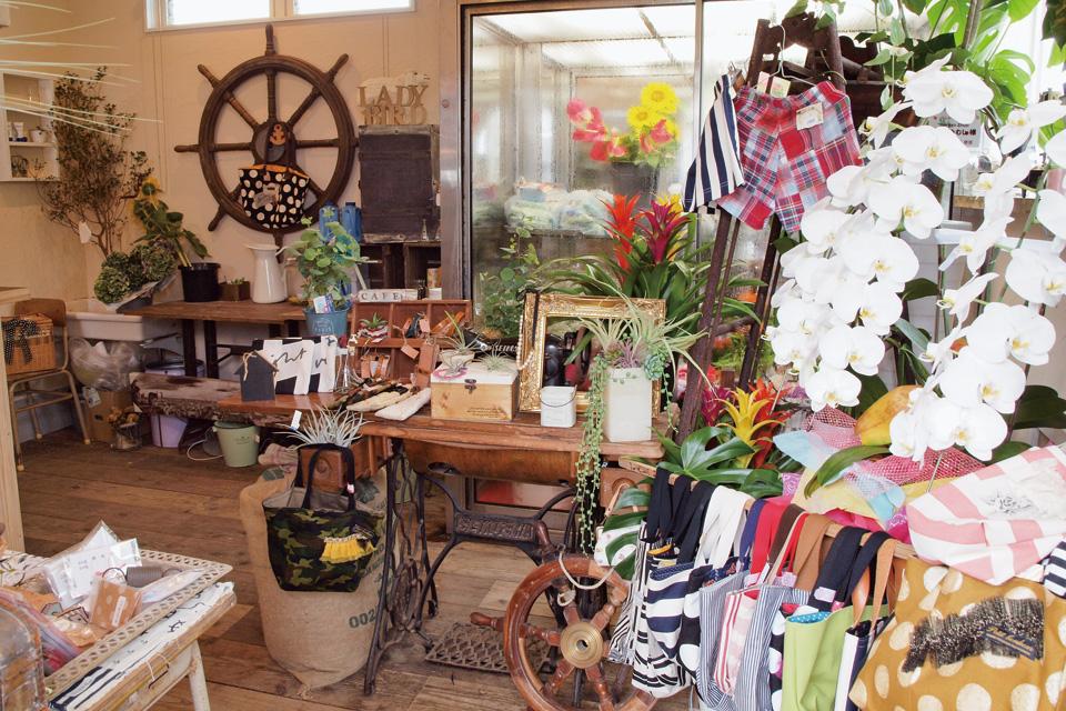Garden shop てんとうむし