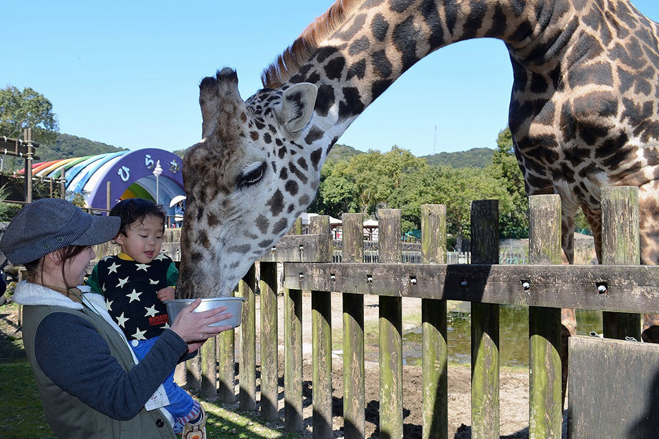 春の動物公園まつり