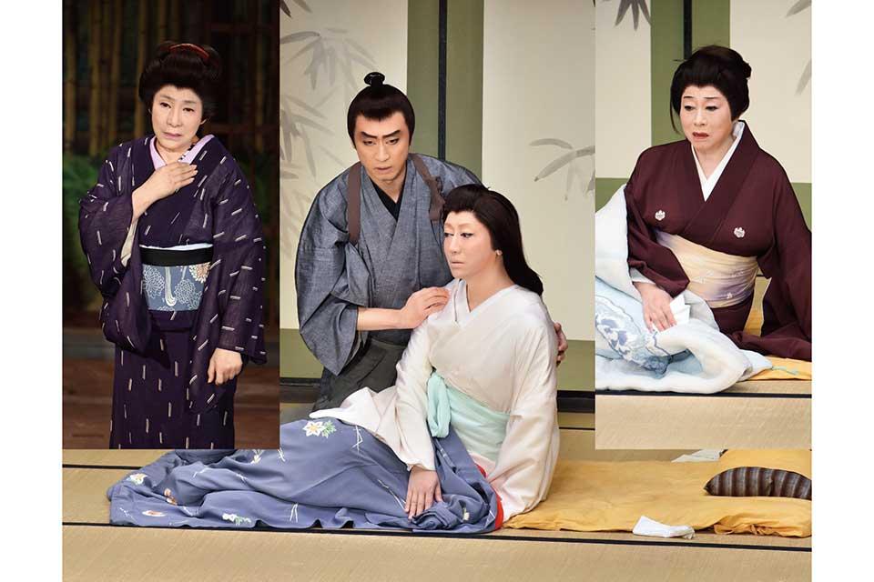 平成三十年度 松竹新派特別公演 新派百三十年記念「華岡青洲の妻」四幕